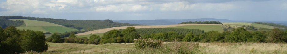 South Downs - Arundel Self Catering